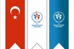 Kirlangic-Bayrak-osmaniye-4